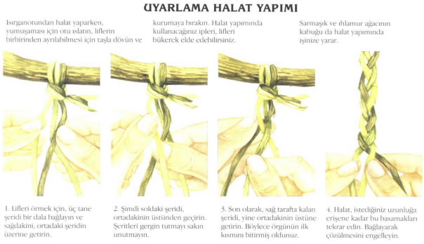 hayatta kalma teknikleri pdf
